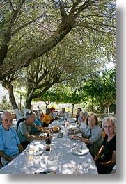 europe, fisheye lens, greece, groups, lunch, nature, plants, shade tree, tourists, trees, vertical, photograph
