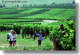 clothes, emotions, europe, from, groups, hats, horizontal, hungary, smiles, vineyards, waving, photograph