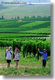 clothes, emotions, europe, from, groups, hats, hungary, smiles, vertical, vineyards, waving, photograph