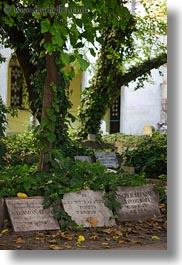 budapest, buildings, cemetary, europe, graves, headstones, hebrew, hungary, language, nature, plants, synagogue, trees, vertical, photograph