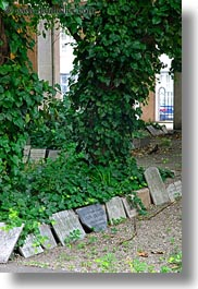budapest, buildings, cemetary, europe, graves, hungary, ivy, synagogue, trees, vertical, photograph
