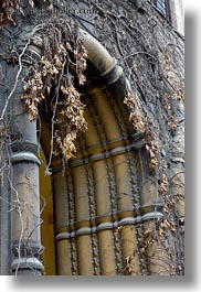 arches, budapest, buildings, dead, europe, exteriors, hungary, ivy, jewish, leaves, religious, synagogue, vertical, photograph