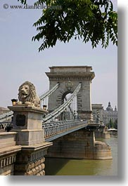 bridge, budapest, europe, heads, hungary, lions, structures, szechenyi chain bridge, vertical, photograph