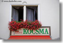europe, flowers, horizontal, hungary, kocsma, signs, tarcal, photograph