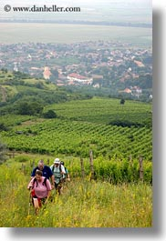 clothes, europe, fields, hats, hikers, hiking, hungary, people, tokaj hills, vertical, photograph