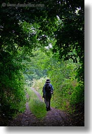 clothes, europe, hats, hikers, hiking, hungary, nature, people, plants, tokaj hills, tree tunnel, trees, vertical, photograph