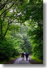 europe, hikers, hiking, hungary, nature, people, plants, tokaj hills, tree tunnel, trees, vertical, photograph