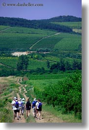 europe, hikers, hiking, hungary, people, tokaj hills, vertical, vinyards, photograph