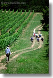 clothes, europe, hats, hikers, hiking, hungary, people, tokaj hills, vertical, vinyards, photograph