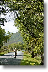 bikers, connaught, connemara, europe, ireland, irish, mayo county, trees, vertical, western ireland, photograph