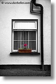 black and white, color composite, color/bw composite, connaught, connemara, europe, ger, ireland, irish, mayo county, vertical, western ireland, win, photograph