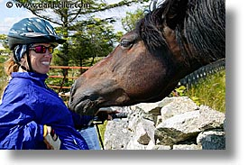 connaught, connemara, europe, horizontal, horses, ireland, irish, jills, mayo county, western ireland, photograph