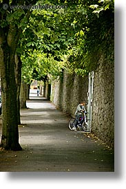 eastern ireland, europe, ireland, irish, kildare, leinster, sidewalks, trees, vertical, photograph