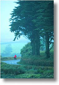 cork, cork county, cyclists, europe, ireland, irish, munster, vertical, photograph