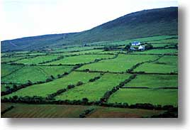 cork county, dingle, dingle penninsula, europe, farmland, horizontal, ireland, munster, photograph