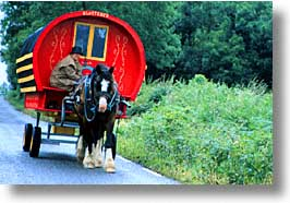 buggy, cork county, dingle, dingle penninsula, europe, horizontal, horses, ireland, munster, photograph