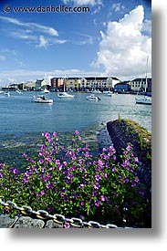cork county, dungarvan, europe, ireland, irish, kerry, kerry penninsula, munster, ring of kerry, vertical, waterford county, western ireland, photograph