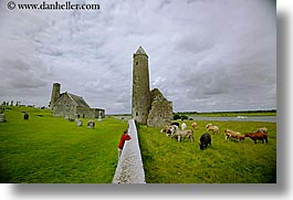clonmacnois, county shannon, europe, horizontal, ireland, round, shannon, shannon river, towers, photograph