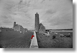 black and white, clonmacnois, county shannon, dublin, europe, horizontal, ireland, irish, round, shannon, shannon river, towers, photograph