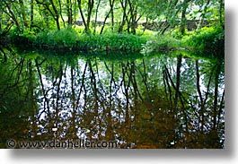 county shannon, dublin, europe, horizontal, ireland, irish, lush, reflections, shannon, shannon river, photograph