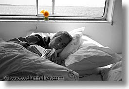 black and white, county shannon, dublin, europe, flowers, horizontal, ireland, irish, shannon, shannon river, sleep, yellow, photograph