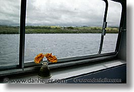 boats, europe, flowers, horizontal, ireland, irish, river barge, rooms, shannon princess, shannon princess ii, water vessel, windows, photograph