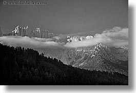 alto adige, black and white, dawn, dolomites, europe, fog, horizontal, italy, latemar, photograph