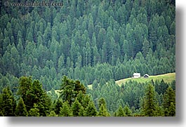 alto adige, dolomites, europe, forests, horizontal, houses, italy, nature, photograph