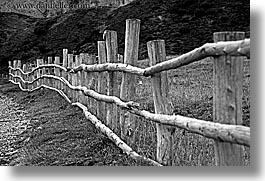 alto adige, black and white, dolomites, europe, fences, horizontal, italy, long, nature, woods, photograph