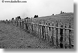 alto adige, black and white, dolomites, europe, fences, horizontal, italy, nature, old, woods, photograph