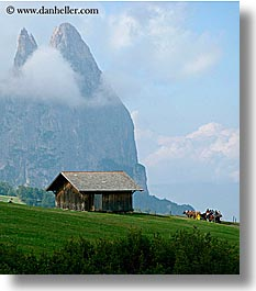 alto adige, carriage, dolomites, europe, horses, houses, italy, rosengarten, scenics, vertical, photograph