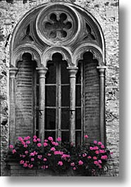 color composite, color/bw composite, doors & windows, europe, flowers, italy, po river valley, valley, vertical, windows, photograph
