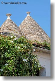 alberobello, buildings, europe, flowers, italy, puglia, trullis, vertical, photograph