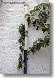 alberobello, europe, green, italy, ivy, pipes, puglia, vertical, white, photograph