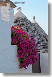 alberobello, bougainvilleas, europe, italy, plants, puglia, roofs, slow exposure, trullis, vertical, photograph