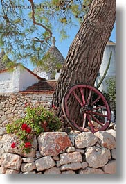 alberobello, europe, flowers, italy, plants, puglia, trees, vertical, wagons, wheels, photograph
