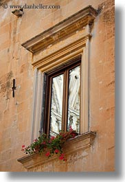 europe, geraniums, italy, lecce, puglia, vertical, windows, photograph