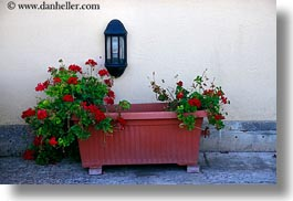 europe, flowerbox, horizontal, italy, lamps, lecce, patria palace hotel, puglia, photograph