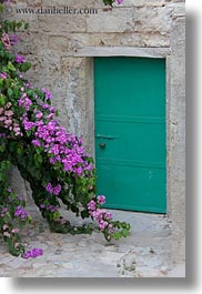 bougainvilleas, doors, europe, flowers, italy, matera, nature, plants, puglia, purple, vertical, photograph