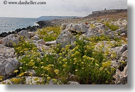 europe, horizontal, italy, otranto, puglia, rocks, santo emilian, towers, weeds, photograph