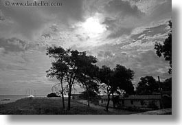 black and white, clouds, europe, horizontal, italy, porticciolo, puglia, silhouettes, trees, photograph