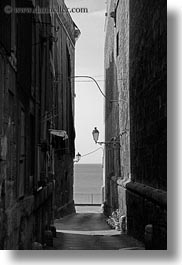 alleys, black and white, europe, italy, narrow, puglia, street lamps, taranto, towns, vertical, photograph