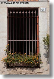 europe, flowers, gates, irons, italy, puglia, trani, vertical, windows, photograph