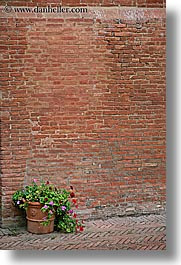 bricks, europe, flowers, italy, monestaries, monte oliveto maggiore, tuscany, vertical, photograph