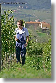 europe, fattoria lavacchio, grapes, italy, men, pickers, towns, tuscany, vertical, photograph