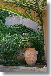 archways, europe, isola giglio, italy, ivy, pots, teracotta, towns, tuscany, under, vertical, photograph
