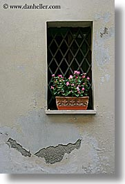 europe, flowers, italy, montalcino, towns, tuscany, vertical, windows, photograph