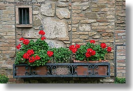 europe, flowers, geraniums, horizontal, italy, montalcino, stones, towns, tuscany, walls, windows, photograph
