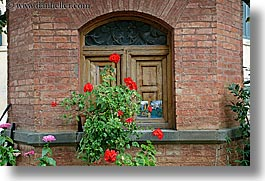 bricks, europe, flowers, gardens, geraniums, horizontal, italy, montalcino, shed, towns, tuscany, photograph