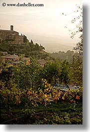 europe, italy, montalcino, overlook, scenics, towns, tuscany, vertical, photograph